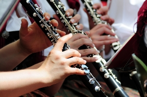 Clarinet Lesson Westlake Village